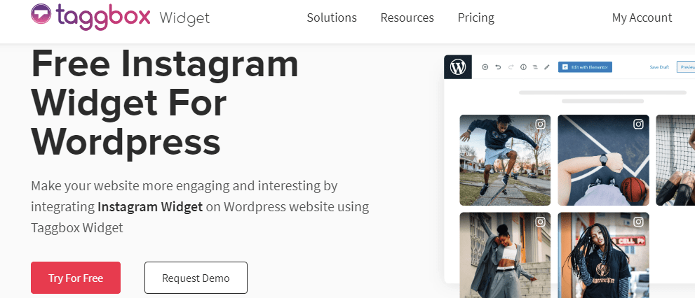 Instagram widget for wordpress websites by Taggbox
