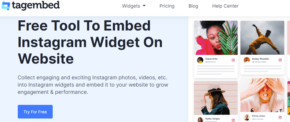 Instagram Widget for WordPress website by Tagembed